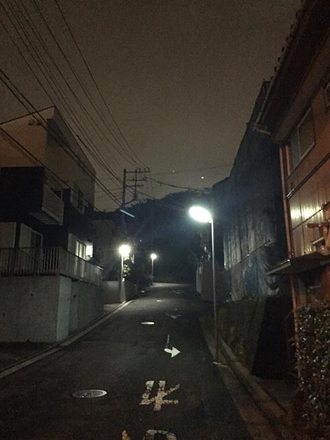 aobaku-utsukushigaoka03
