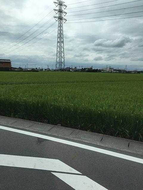 gyoudashi-fukamicho02