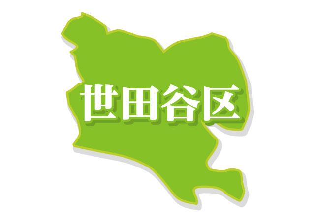 世田谷 区 燃え ない ゴミ